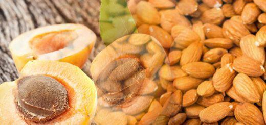 katapolemisi-tou-karkinou-me-vitamini-b17-amygdalini