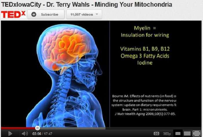 Dr Terry Wahls Minding Mitochondria