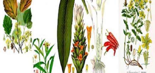 ta-pente-ishirotera-antiflegmonodi-votana