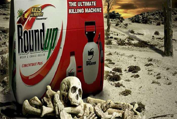 i-tromaktiki-alitheia-gia-to-roundup-the-ultimate-killing-machine