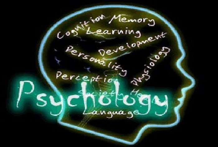 analiste-ton-eafto-sas-me-afto-to-psihologiko-test