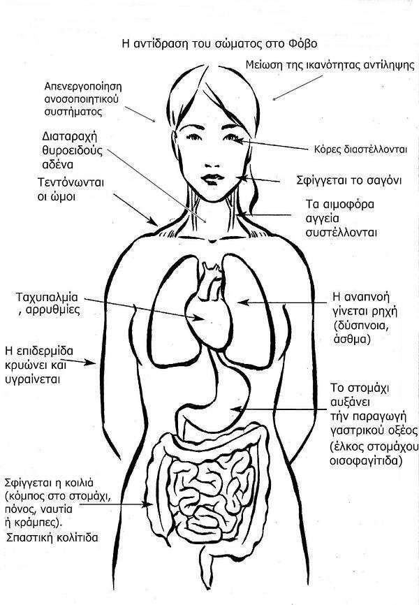 epiptoseis-tou-fovou-antimetopiste-ton-fobo-tis-aporripsis