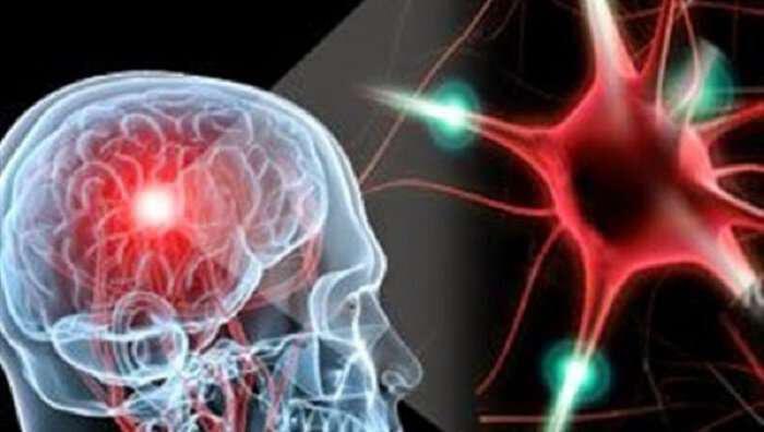 egkefalos-synapseis