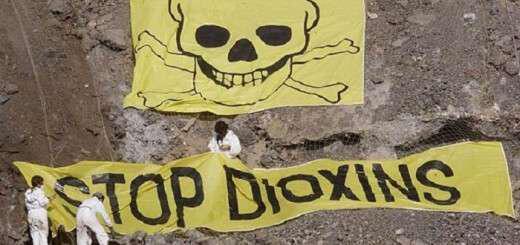 ti-einai-pou-vriskontai-kai-poso-epikindynes-einai-oi-dioxines