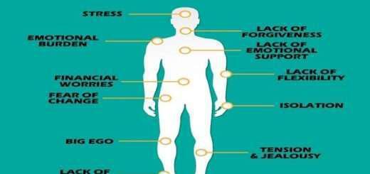 12-organa-kai-ponoi-pou-syndeontai-me-synaisthimatikes-katastaseis