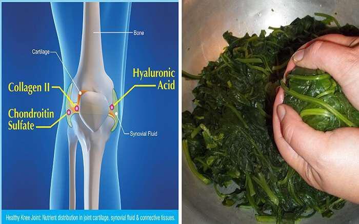 trofes-me-magnisio-prolamvanoun-osteoporosi-ypertasi-kai-kardiaka
