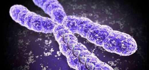 epigenetikes-allages-asylliptes-epiptoseis-gia-ti-zoi-kai-tin-ygeia