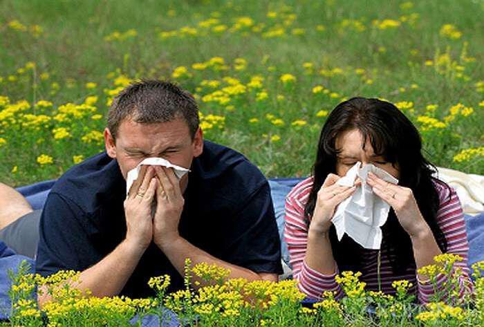 allergia-ti-einai-pos-ekdilonetai-symptomata-kai-pos-antimetopizetai