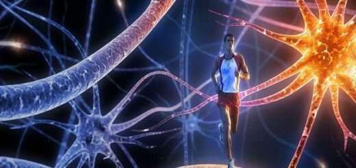 energopoioume-tous-tesseris-nevrodiavivastes-tou-egkefalou-pou-epireazoun-tin-eftyhia