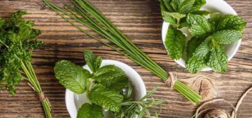 hortofagikes-piges-vitaminon-apo-votana-kai-fyta