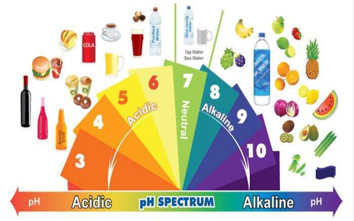 kante-to-soma-sas-alkaliko-kai-katapolemiste-tis-astheneies