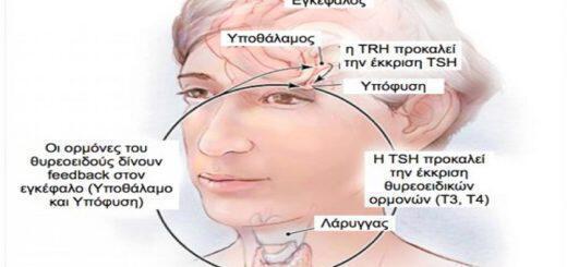 thyreoeidis-rythmistis-tou-metabolismou-giati-nosei-ti-mporoumena-kannoume