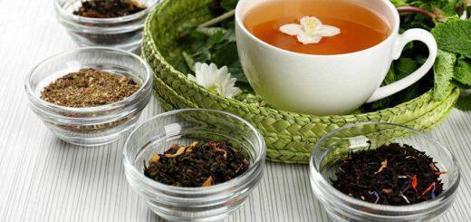 10 βότανα που βοηθούν στο αδυνάτισμα