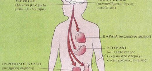pos-emplekontai-aghos-ormones-osteoporosi-anosopoiitiko-kai-psihosomatikes-astheneies