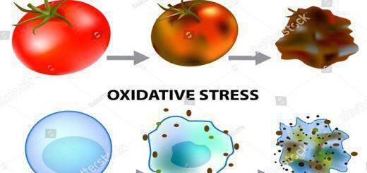 oxeidotiko-stres-antioxeidotika-pos-i-diatrofi-prostatevei-dna-kyttara-kai-ygeia