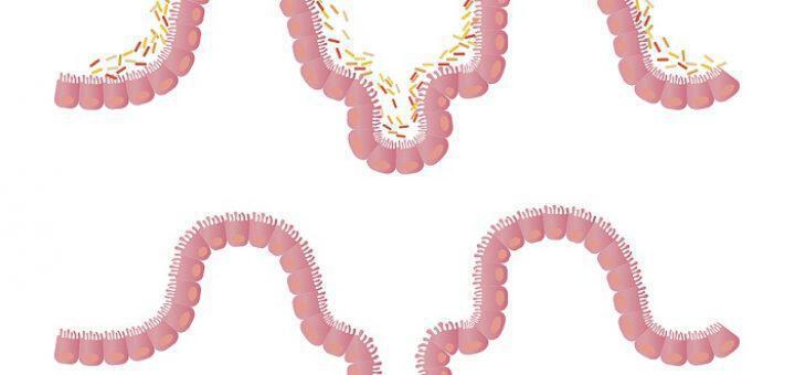 diarreon-entero-simadia-pou-ypodeiknyoun-oti-pashete-kai-antimetopisi