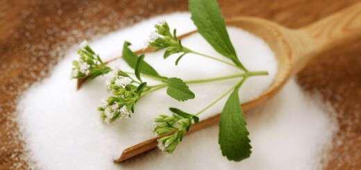 stevia-i-igiini-anti-gia-zachari