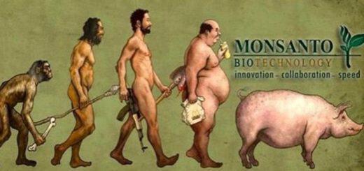 monsanto-i-biotehnologia-to-monopolio-kai-ta-symferonta