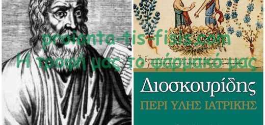 dioskouridis-o-pateras-tis-votanologias-kai-tis-farmakologias