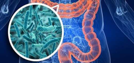 microbioma-i-mikroviaki-hlorida-kai-i-biomihania-ton-emvolion