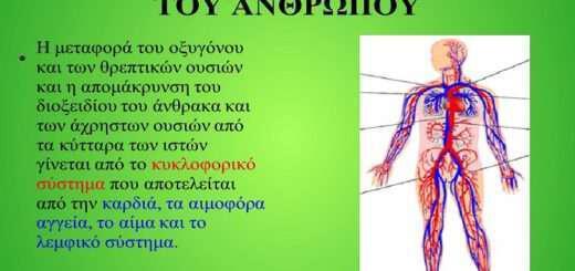 votana-pou-prostatevoun-kai-anazoogonoun-aima-kai-kykloforiko