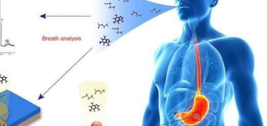 test-anapnois-ta-diagnostika-ergaleia-tou-mellontos