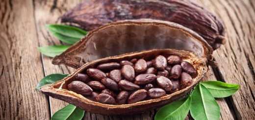 karpoi-kakao-i-cacao-beans-gematoi-antioxeidotika-kai-evergetikes-idiotites
