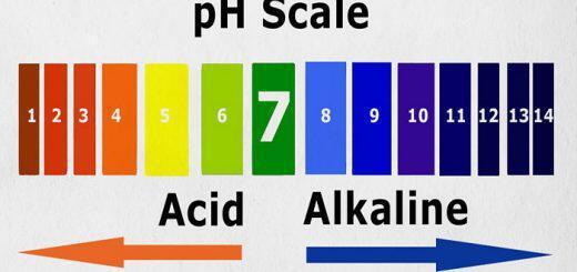 astheneis-akomi-kai-me-karkino-ehoun-oxino-ph-pos-na-metrisete-to-diko-sas