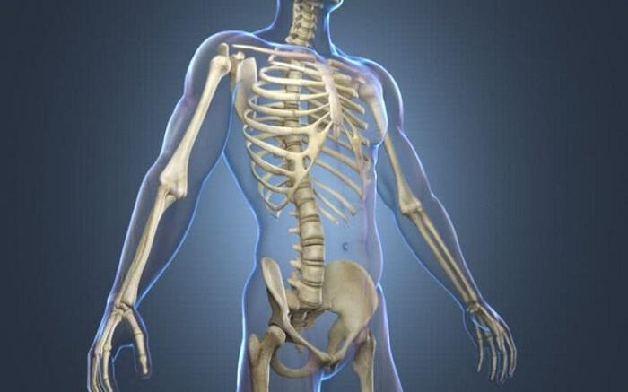 Οι τροφές που στηρίζουν τον... σκελετό μας