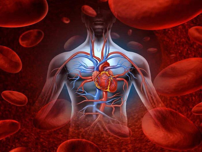 Τρόποι ελέγχου της κακής κυκλοφορίας του αίματος