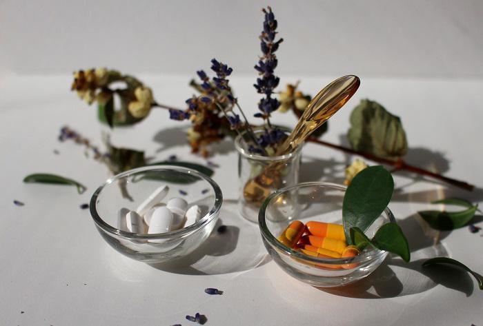 Η ιστορία της γνώσης των ιατρικών φαρμάκων από φυτά