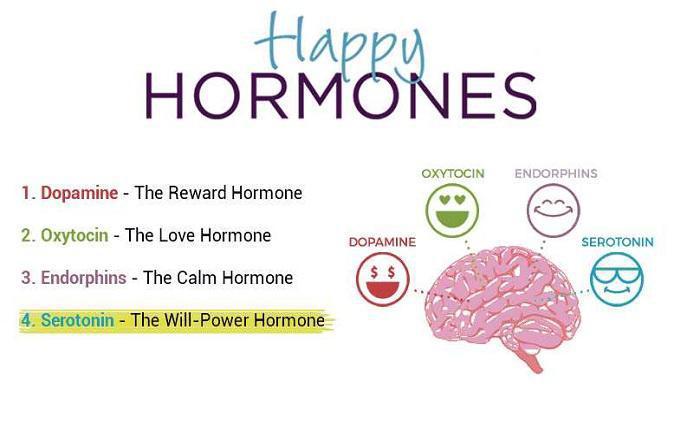 Ενδορφίνες-Σεροτονίνη-Ντοπαμίνη-Ωκυτοκίνη: Οι ορμόνες της ευτυχίας και τρόποι αύξησής τους