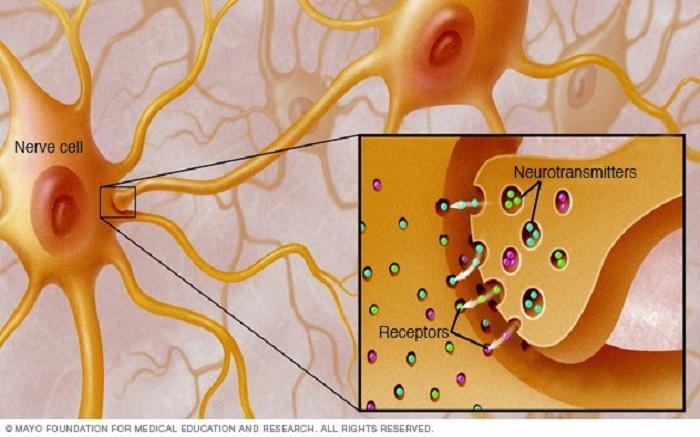Αυτοάνοσα-Μυασθένεια gravis: Συμπτώματα, αιτίες και αντιμετώπιση